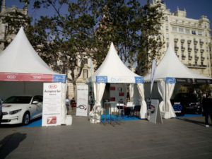 stand lugenergy movements valencia